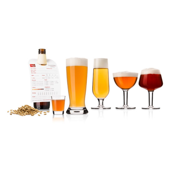 Beer Tasting Glassware Set